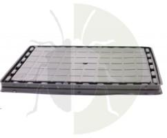 catchmaster-capcana-24xl-jumbo-adeziv-sobolani-set-2-buc